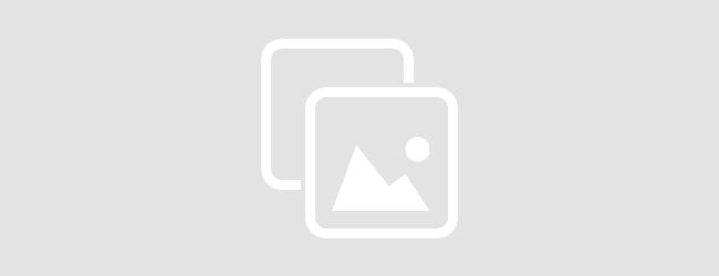 Quotidiano online della provincia di Torino: Leggi Notizia